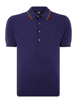 Regular fit knitted stripe polo