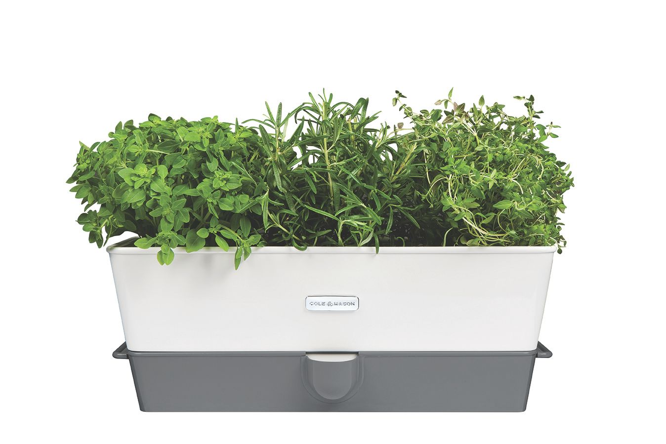 Cole Mason Self Watering Triple Potted Herb Octer