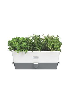 Self-Watering Triple Potted Herb Keeper