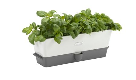 Cole & Mason Self-Watering Triple Potted Herb Keeper