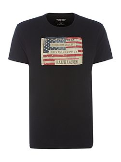 Regular fit crew neck american flag print t