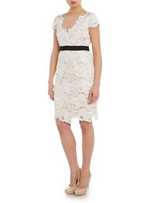 Adrianna Papell Floral guipure cocktail dress