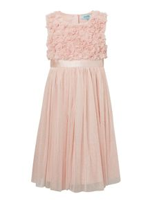 Little Dickins & Jones Girls Flower Sparkle Mesh Dress