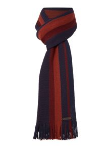 Ted Baker Bumble Stripe And Spot Scarf