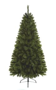 Linea 7ft Colonial fir cortina tree