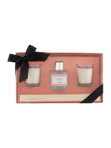 Linea Pink Grapefruit & Mango Mini Gift Set