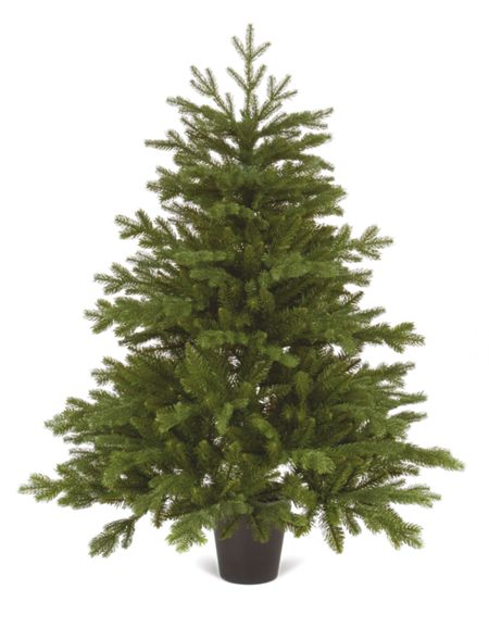 Linea 4ft Emerald tree