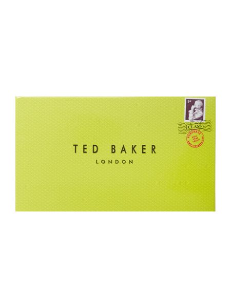 Ted Baker Kimmiko mint green large patent flapover purse