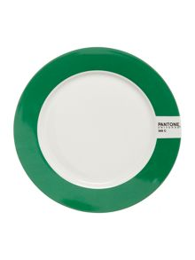 Pantone Medium plate luca trazzi bright green