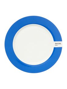 Pantone Medium plate luca trazzi dark blue