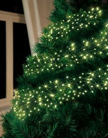 Linea 480 warm white LED clustered christmas lights