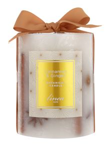 Linea Cinnamon & ginger botanical candle