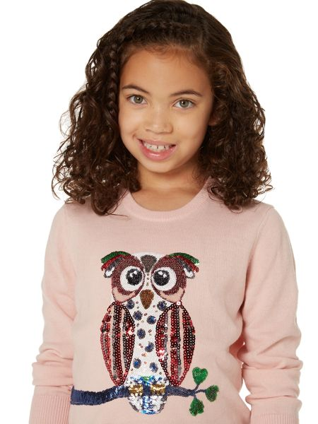Little Dickins & Jones Girls Sparkly Owl Crew Neck Jumper