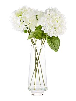 Large hydrangea arrangement