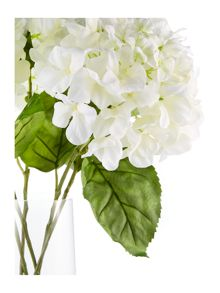 Linea Large hydrangea arrangement