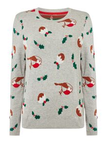 Dickins & Jones Rhian The Robin Xmas Pudding Jumper