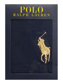 Polo Ralph Lauren Stretch Cotton Logo Classic Trunk