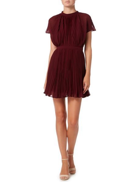 Keepsake Short Sleeve Pleated Detail Fit & Flare Dress
