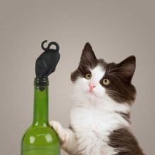 Fred Bottle Stopper  `Stop Kitty` Design