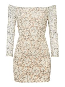 Endless Rose Long Sleeved Round Neck Lace Patterned Dress