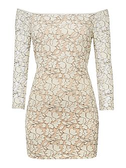Long Sleeved Round Neck Lace Patterned Dress