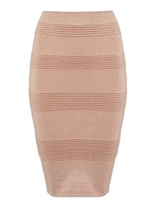 Endless Rose Panelled Bodycon Skirt