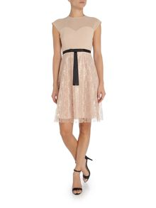 Elise Ryan Cap sleeve lace skater dress with short bow