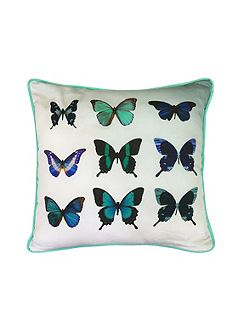 Butterfly collective 45x45 feather filled cushion