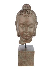 Junipa Buddha Head
