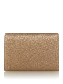 Lauren Ralph Lauren Darlington Clutch Bag