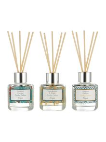 Linea Summer set of 3 Diffusers
