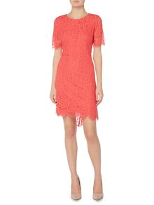 Eliza J Three quarter sleeve floral lace dress