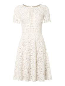 Eliza J Lace fit and flare dress with inset waist