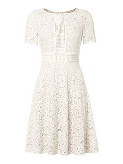 Lace fit and flare dress with inset waist