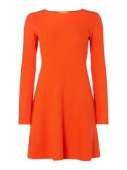Iesibell long sleeve fit and flare dress
