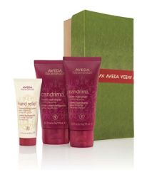 Aveda A Gift of Warm Moments Gift Set