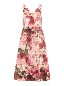 Adrianna Papell Sleeveless v neck fit and flare tea dress