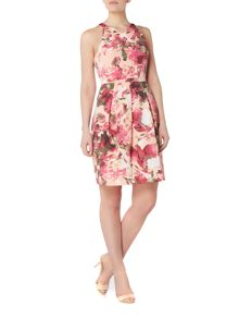 Adrianna Papell Sleevless floral halter neck shift dress