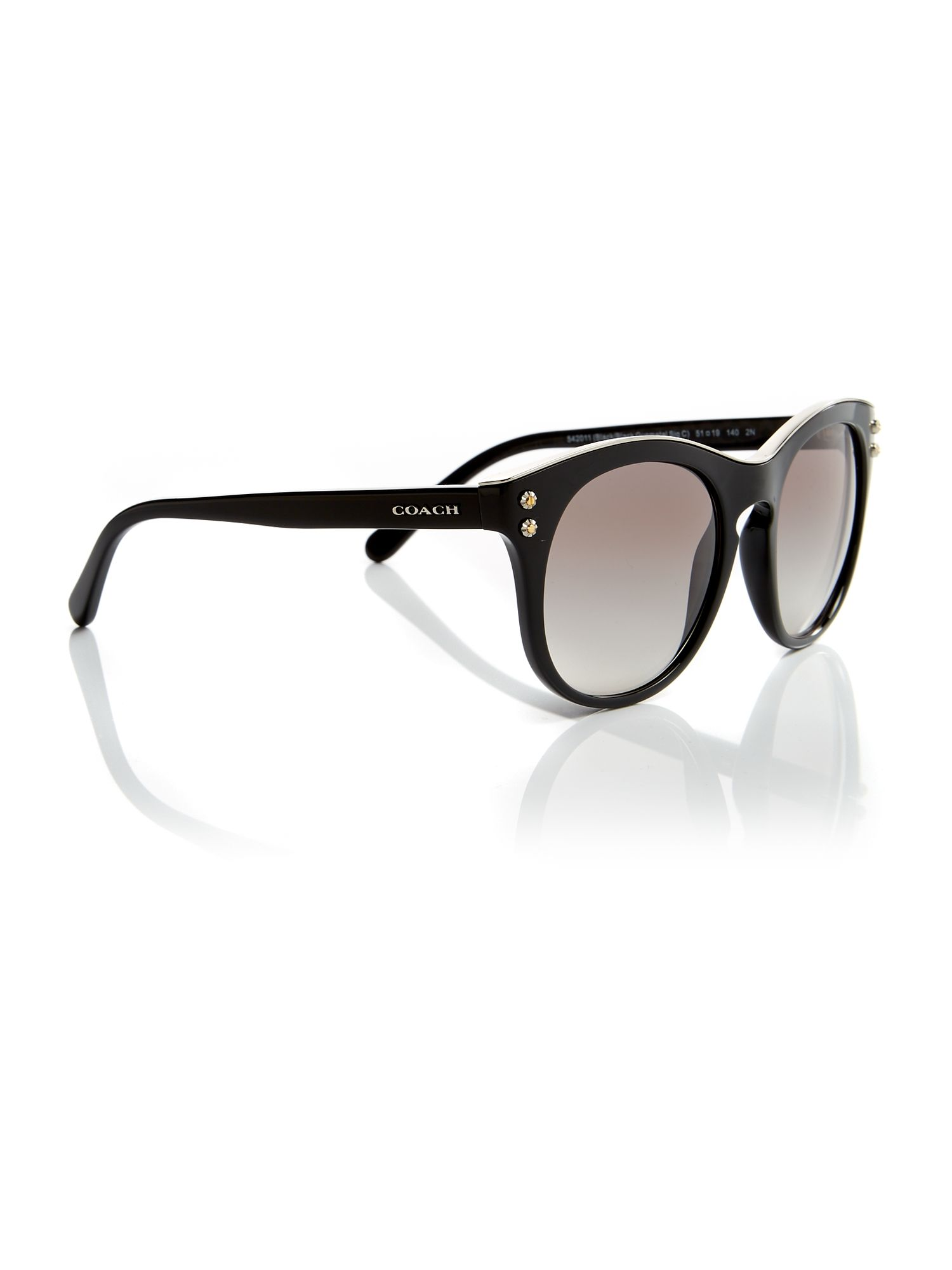 Coach Black phantos HC8190 sunglasses, Black