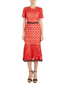 Jill Jill Stuart All over lace dress with contrast trim