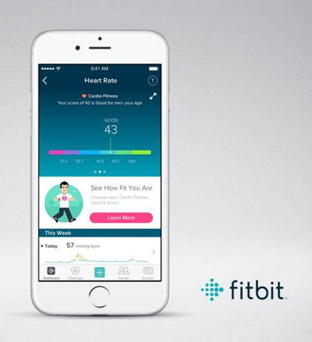 Fitbit Charge 2 Plum & Silver, small