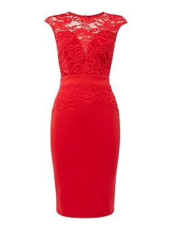 Cap Sleeve Lace Bodycon Dress