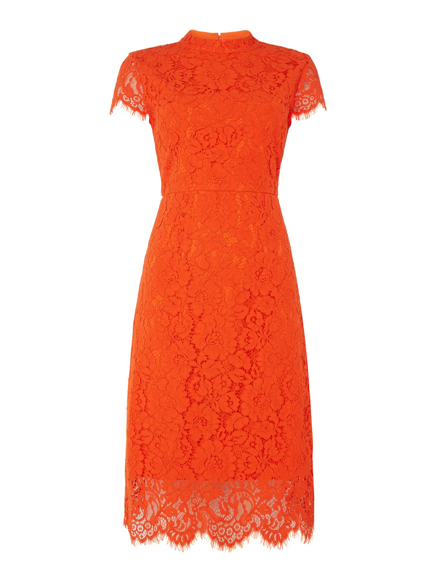 IVY & OAK Ivy & Oak Lace cocktail dress with cap sleeves, Orange