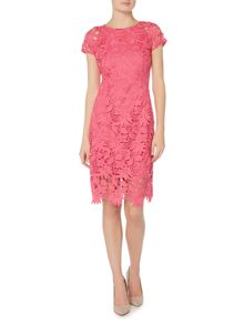 Ellen Tracy Short sleeve floral lace dress
