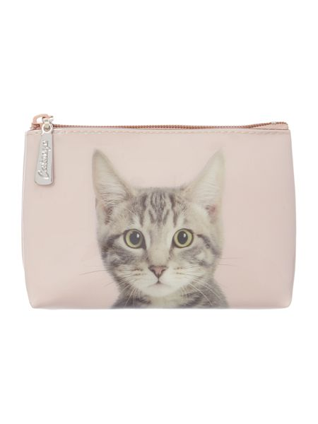 Catseye Tabby on Taupe Pouch