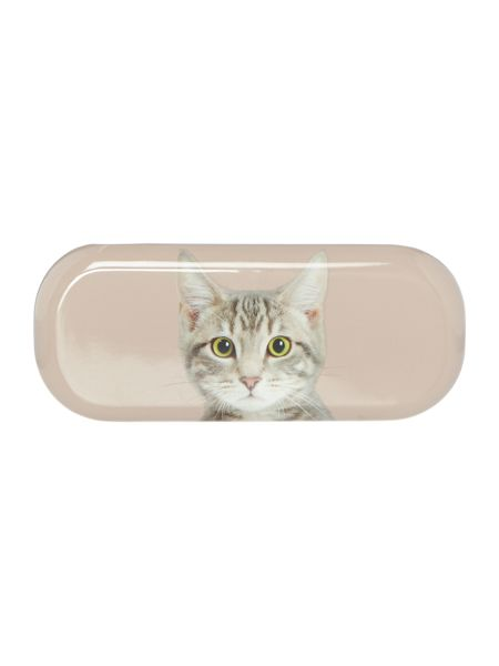 Catseye Tabby on Taupe Glasses Case