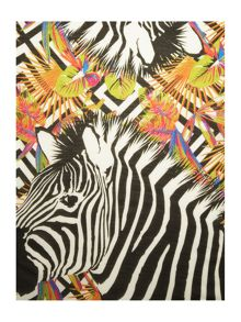 Lola Rose Ipanema zebra supersoft scarf