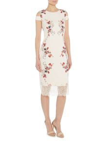 Twilight Rose Sleeveless cold shoulder lace dress