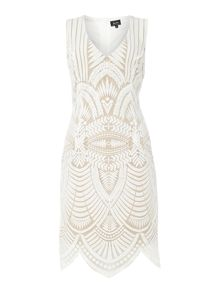 Bardot Embroidered sleeveless plunge bodycon dress
