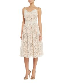Little Mistress Fit and flare lace midi dress